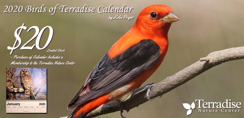 2020 calendar slide