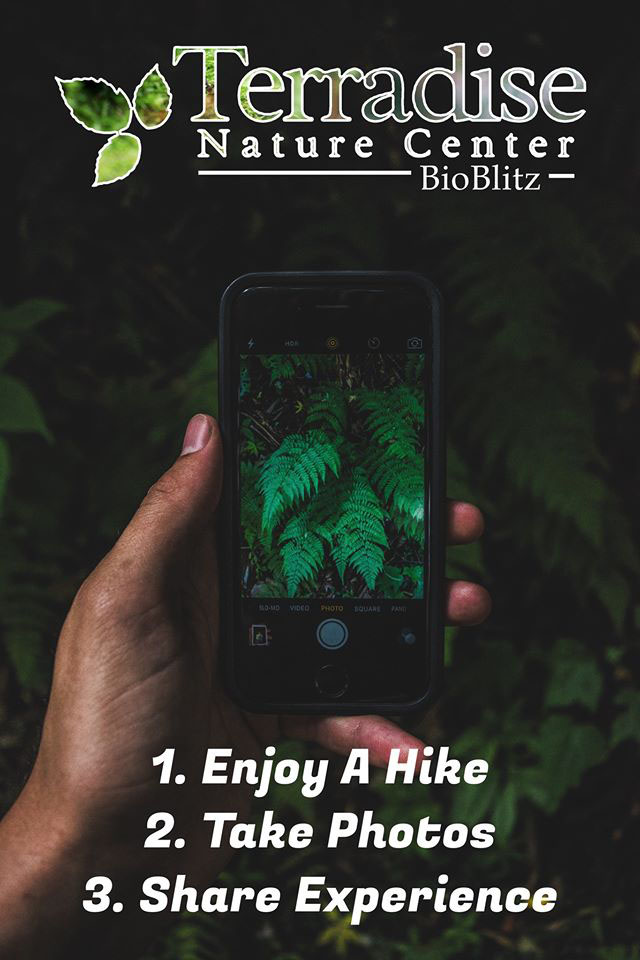BioBlitz 1...2...3...
