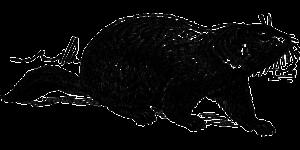 groundhog-153009_1280