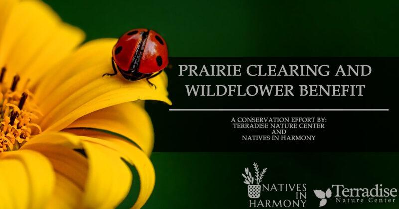 Prairie Clearing Banner