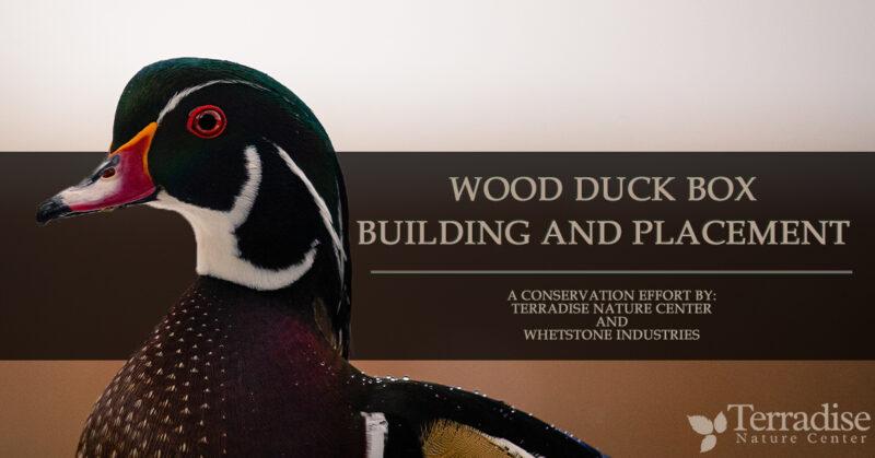 Wood Duck Box Banner