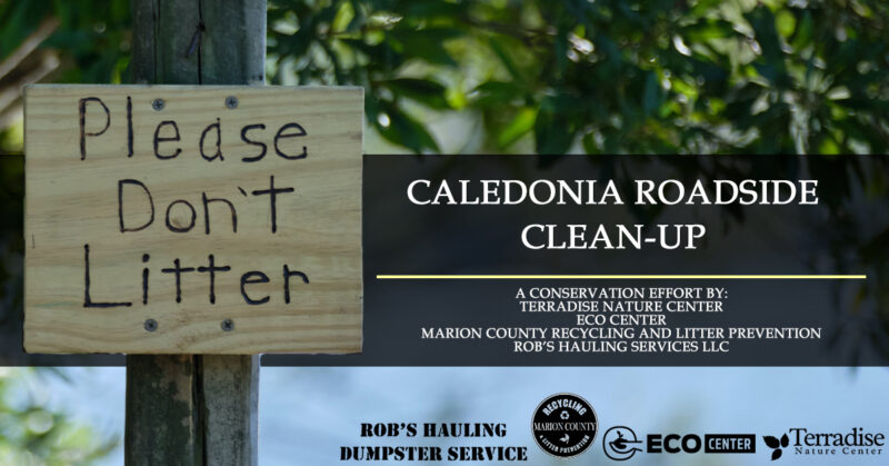 Caledonia Clean-up